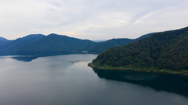 滋賀県産の木材(びわ湖産材)